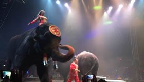 April Watts Universoul Circus1