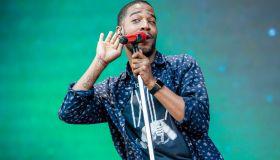 2015 Lollapalooza - Day 2